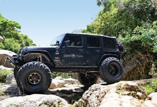 The-Black-Stallion-Wrangler-Arab-Motor-World-00