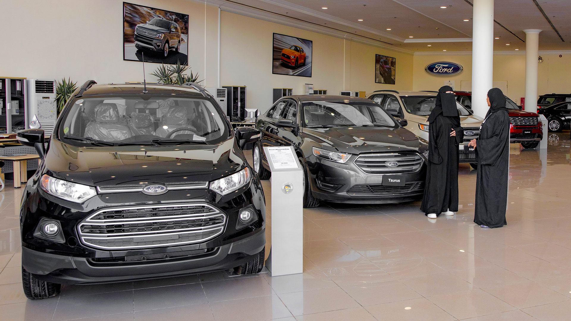 Ford Car Dealer Al Near