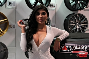 Babes on Cars Girls of SEMA (10)