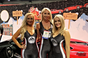 Babes on Cars Girls of SEMA (11)