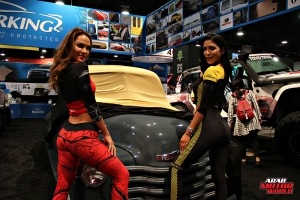 Babes on Cars Girls of SEMA (13)