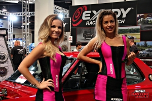Babes on Cars Girls of SEMA (15)