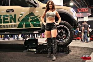 Babes on Cars Girls of SEMA (16)
