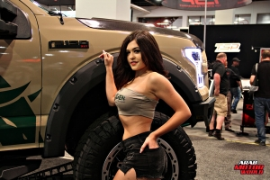 Babes on Cars Girls of SEMA (17)