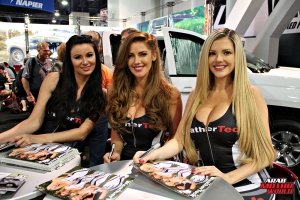 Babes on Cars Girls of SEMA (22)
