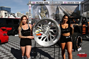 Babes on Cars Girls of SEMA (42)