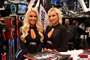Babes on Cars Girls of SEMA (6)