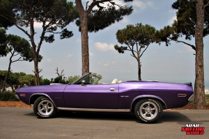 Dodge Challenger Muscle Cars Lebanon Arab Motor World (14)