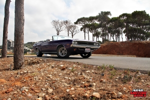 Dodge Challenger Muscle Cars Lebanon Arab Motor World (16)