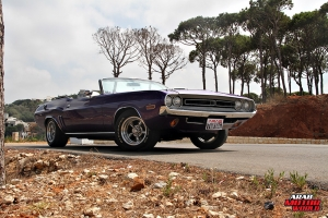 Dodge Challenger Muscle Cars Lebanon Arab Motor World (17)