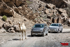 Ford Expedition Test Drive - Arab Motor World (24)