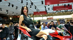 Girls Babes of EICMA 2018 (31)