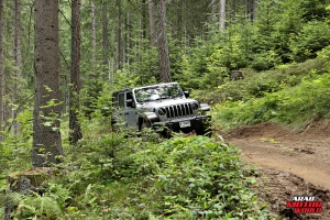 Jeep Wrangler Austria Jeep Camp Arab Motor World (5)
