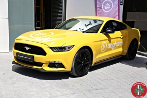 Mustang Club Lebanon Official Launch (13)