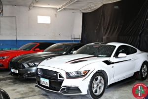 Mustang Club Lebanon Official Launch (183)