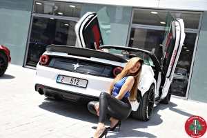 Mustang Club Lebanon Official Launch (68)