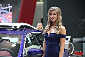 The Girls of Dubai Motor Show (19)