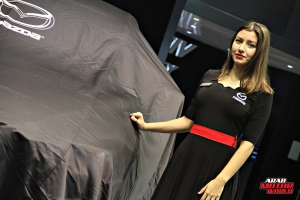 The Girls of Dubai Motor Show (21)