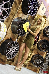 The Girls of Essen Tuning Show Arab Motor World Heels and Wheels (06)