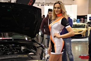 The Girls of Essen Tuning Show Arab Motor World Heels and Wheels (12)