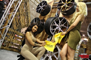 The Girls of Essen Tuning Show Arab Motor World Heels and Wheels (40)