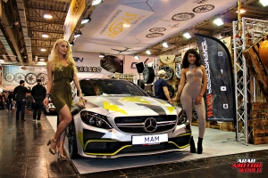 The Girls of Essen Tuning Show Arab Motor World Heels and Wheels (61)